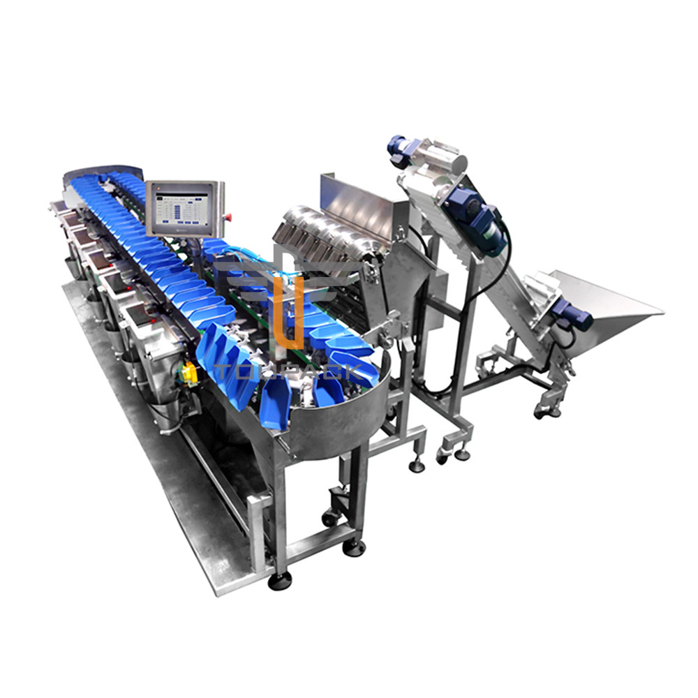 Conveyor Fish Fruit SUS304 1000g Weight Sorting Machine