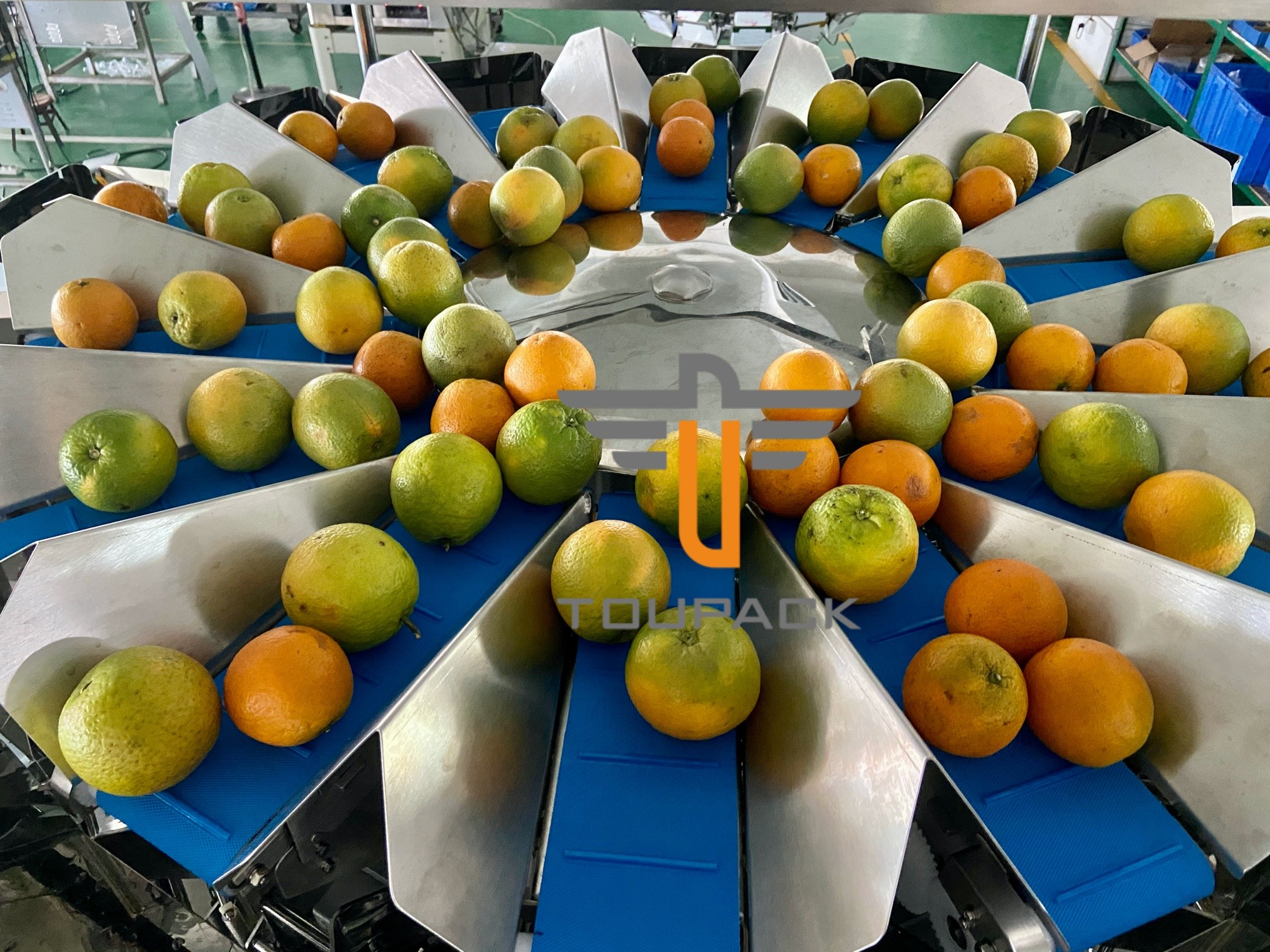 Oranges Food Grade 5.0L 14 Head Multihead Weigher